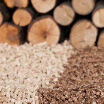 Certificacion de biocombustibles sólidos